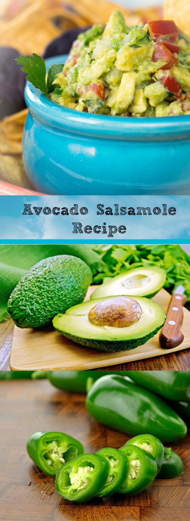 Guacamole Recipe : Avocado Salsamole Recipe
