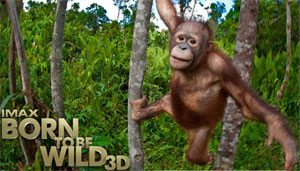 win tickets to born to be wild 3d