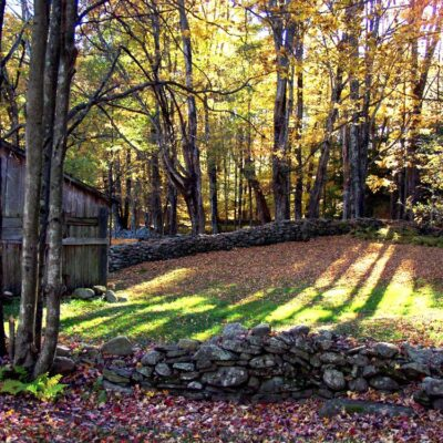 Photography Finds : Visions of Fall