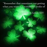 Luck of the Irish : Luck Quotes