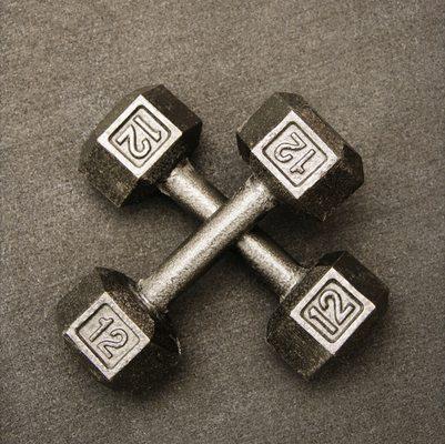 Twelve pound weights