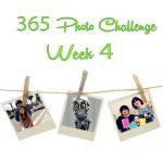 365 Photo Challenge : Week 4