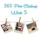 365 Photo Challenge : Week 5