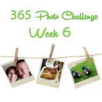 365 Photo Challenge : Week 6
