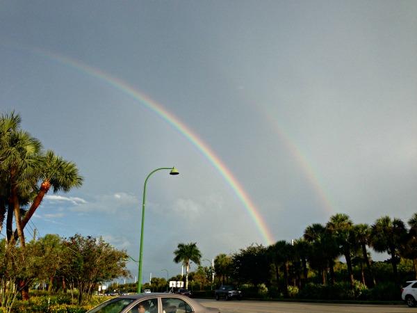 rainbows-florida-01