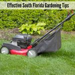 Simple, Yet Effective South Florida Gardening Tips