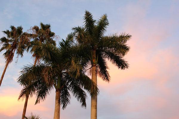 south-florida-sky-01
