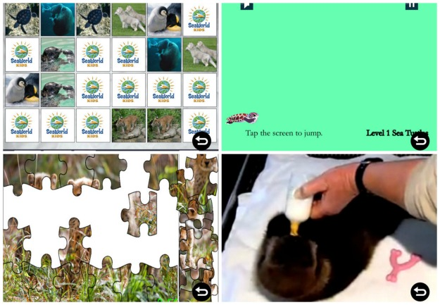 Baby Animals App Features