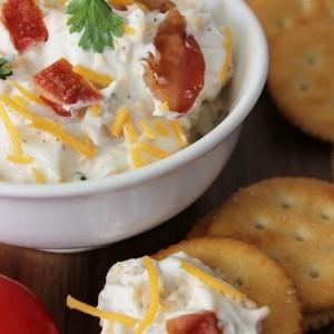 bacon-cheddar-ranch-dip-recipe