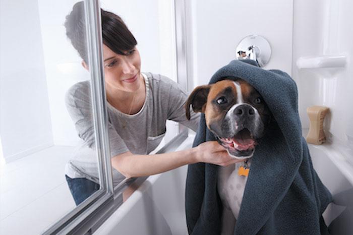 Sterling Prevail Shower Door