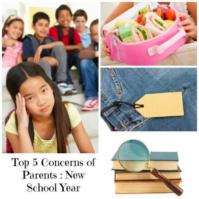 Top 5 Things on Parents Minds for the 2016 School Year