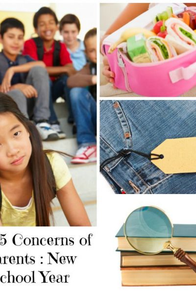 Top 5 Parent Concerns New School Year