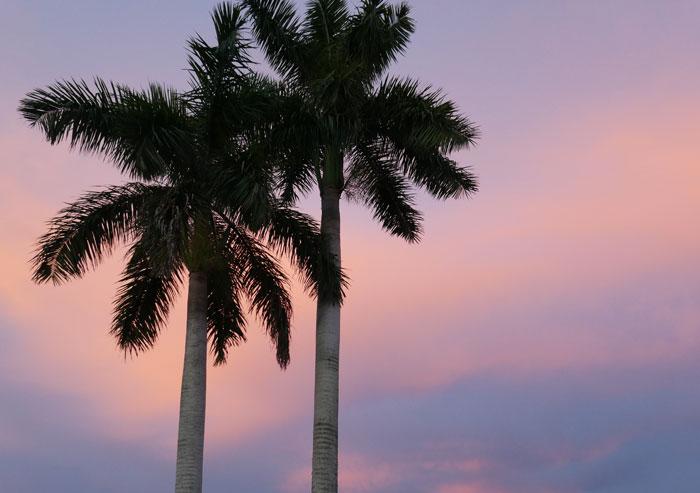 south-florida-sunset