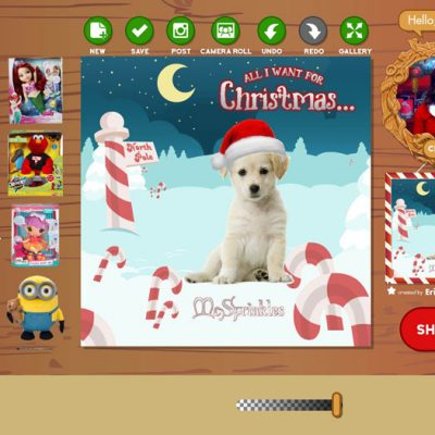 Elf Live App : Tell Santa What You Want