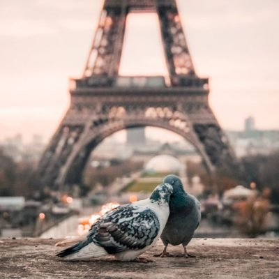 Planning a Trip to Paris: What to Know
