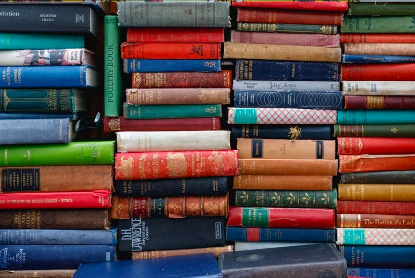 Summer Reading and Most Translated Children's Books