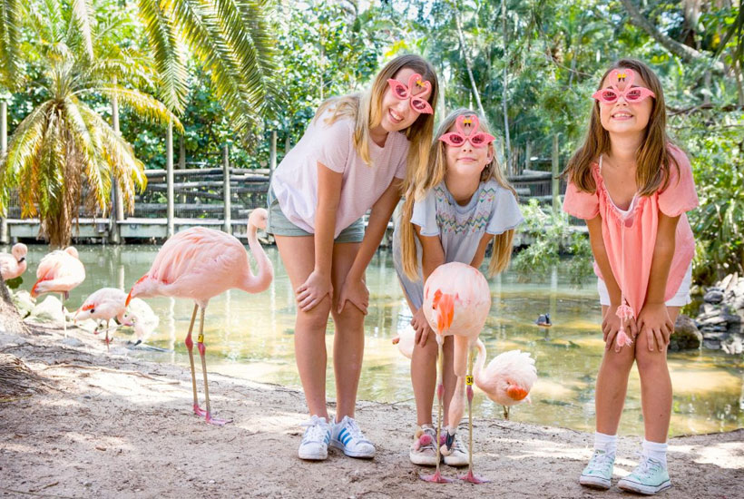Behind the scenes Animal Experiences Palm Beach Zoo