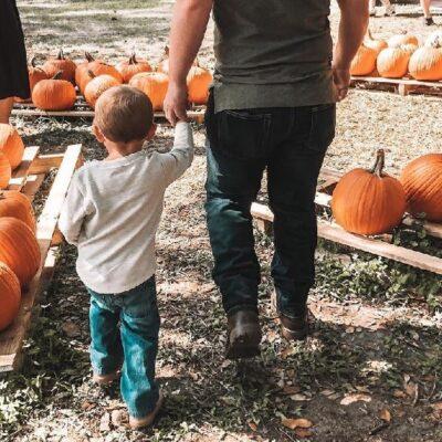 Fall Festivities in Ocala/Marion County